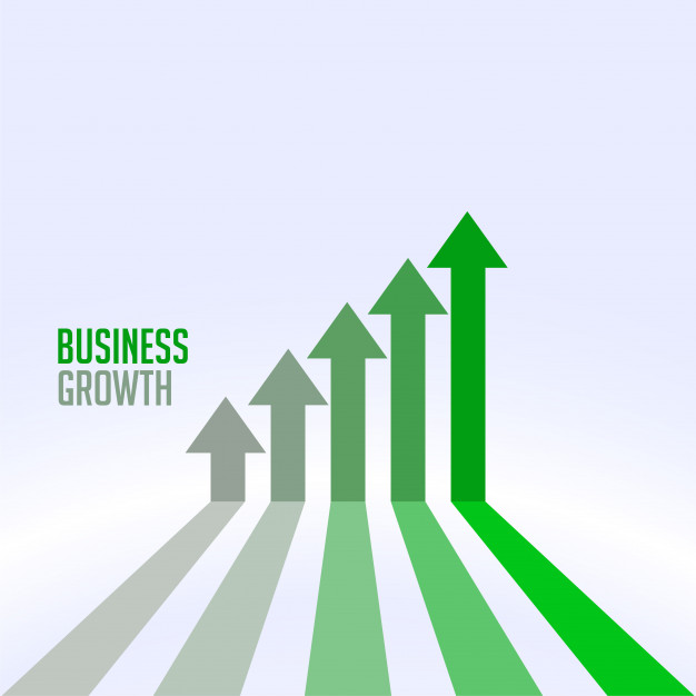 سودآوری و رشد کسب و کار