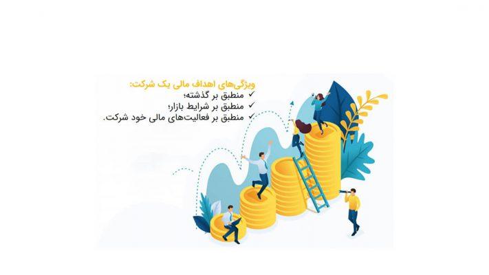 اهداف مالی یک شرکت